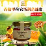 Chasteberry Organic Honey 28g