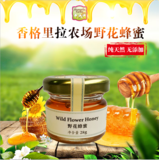 Wild Flower Honey 28g